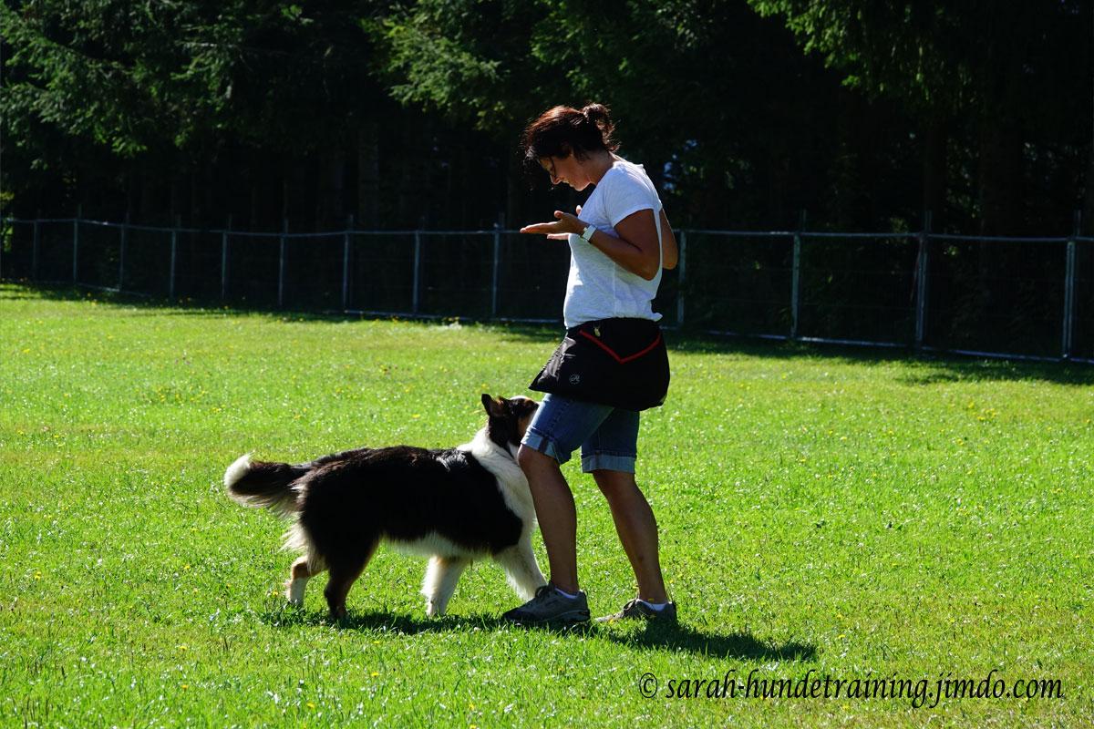 Team-Pruefung-Saalfelden-Hundeschule-Sylvia
