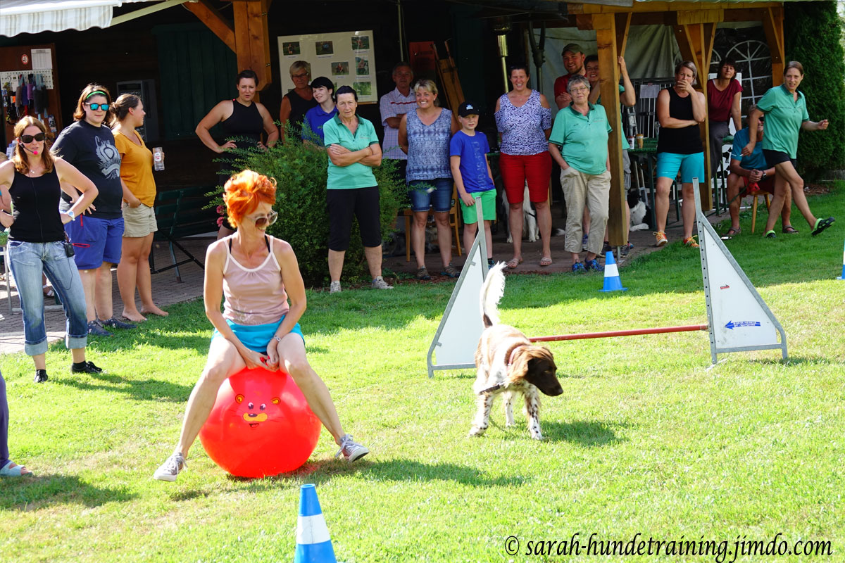 juxturnier-hundeverein