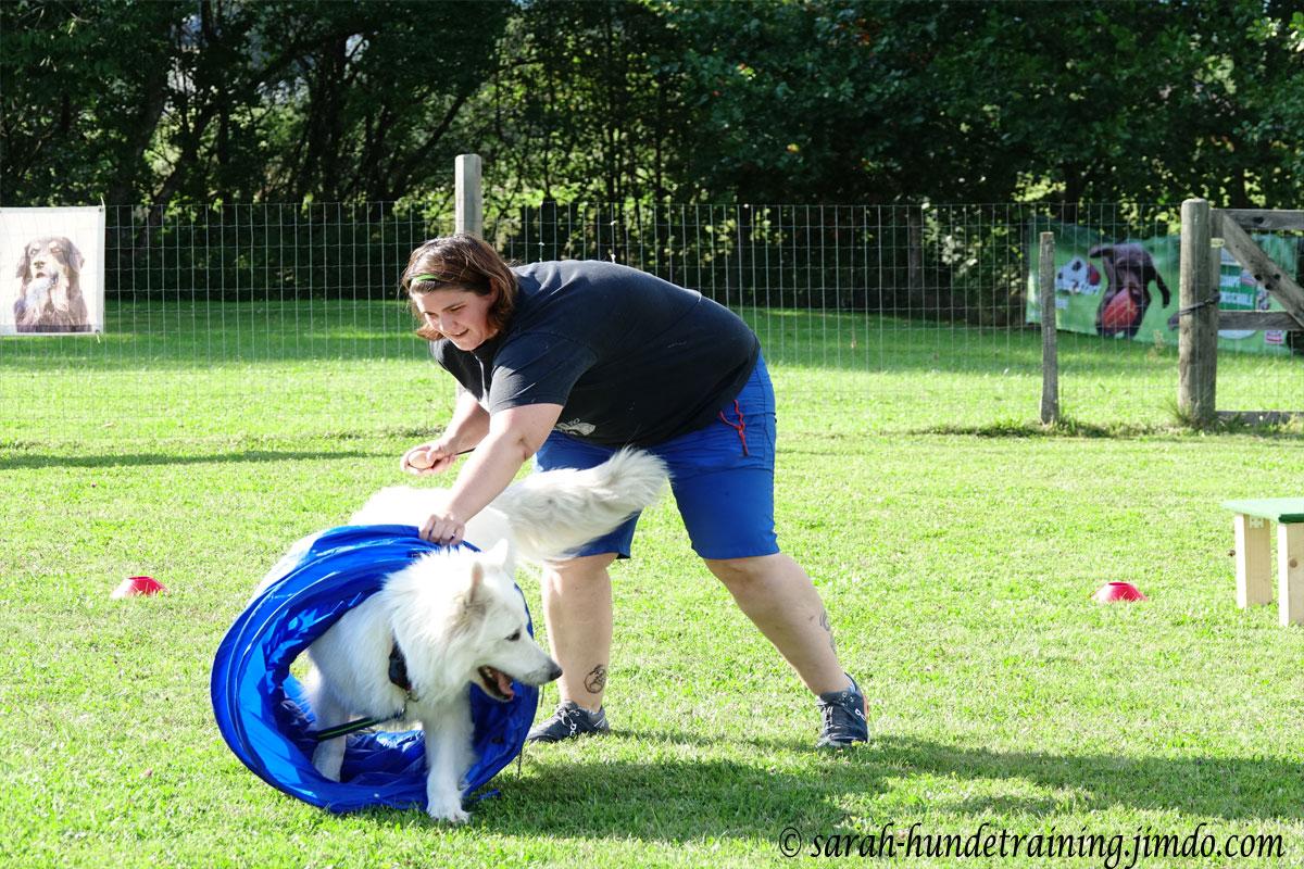 juxturnier-tunne-schaeferhund