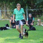 kleine Hunde ganz Groß - Hundeschule Saalfelden