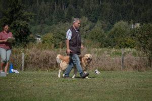 Ortsgruppenprüfung Herbst @ SVÖ Saalfelden