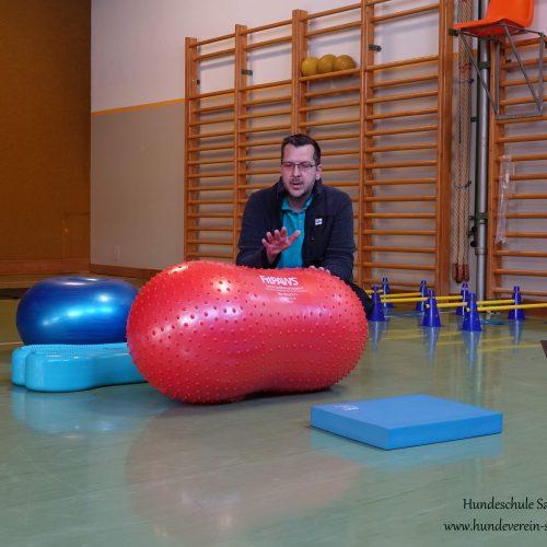 Balance-Workshop-Hundeschule-Saalfelden