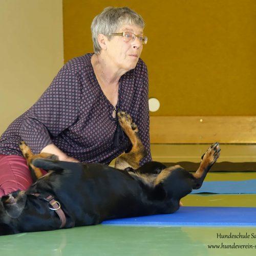 Balance-Workshop-Hundeschule-Saalfelden02