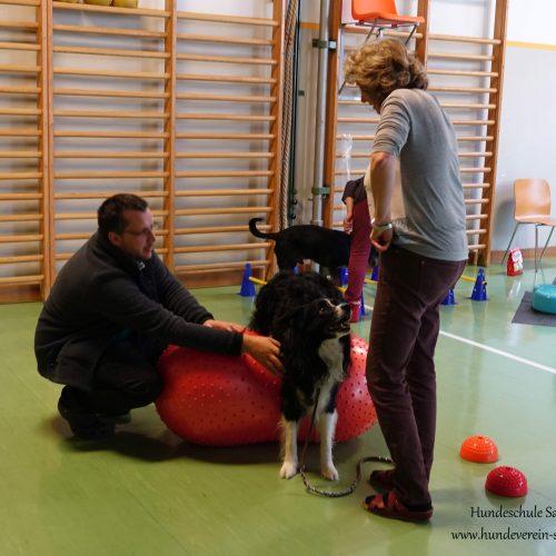 Balance-Workshop-Hundeschule-Saalfelden09