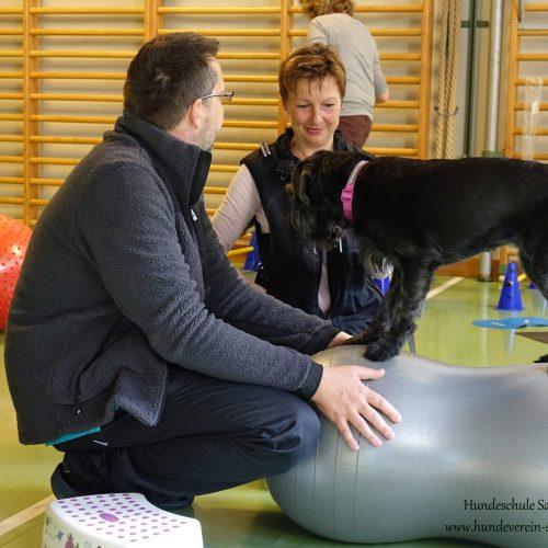 Balance-Workshop-Hundeschule-Saalfelden10