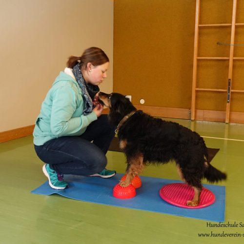 Balance-Workshop-Hundeschule-Saalfelden12