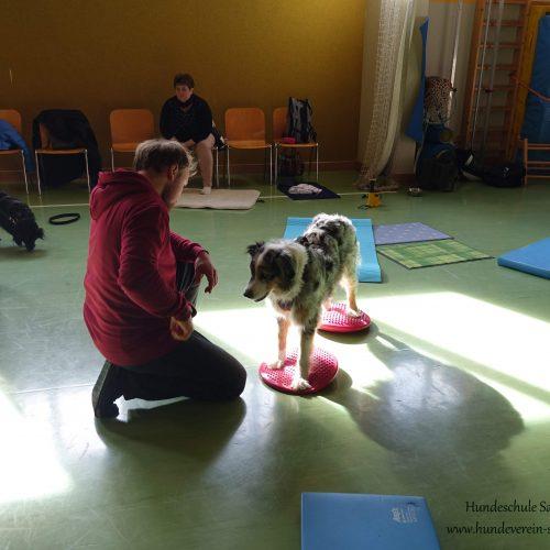 Balance-Workshop-Hundeschule-Saalfelden17
