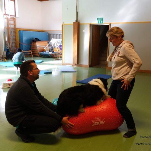 Balance-Workshop-Hundeschule-Saalfelden25